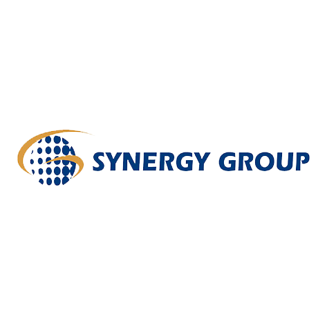 JOSE EFROMOVICH - Member of the Board for Synergy Group - Testimony