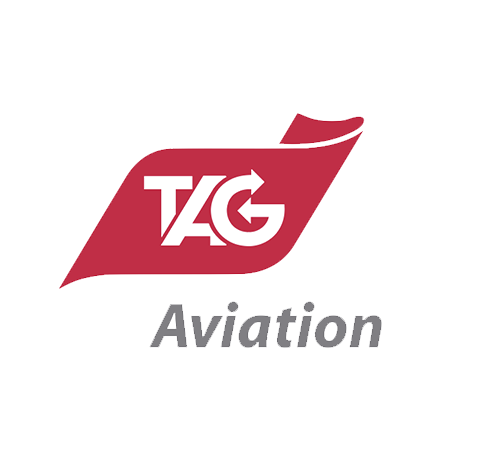 ROBERT H. WELLS - CEO, TAG Aviation Europe - Testimony